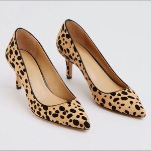 Anne Taylor leopard kitten heels